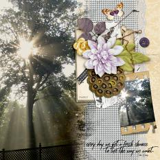 Everyday layout by Shannon using Perfection Items
