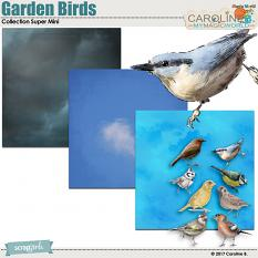 Garden Bird Collection Super Mini by Caroline B.