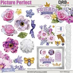 Picture Perfect Embellishment by DRB Designs | ScrapGirls.com