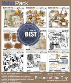 layout using Picture of the day Paper Biggie by florju designs