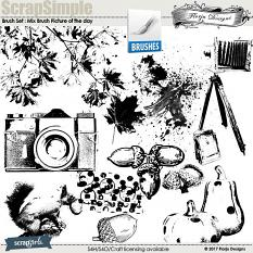 Brush Set: Mix Brush Picture of the day by florju designs