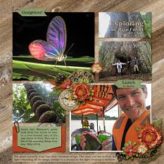 layout by Sue using 2017 Happenings Week 29 - 32 by Dagi's Temp-tations
