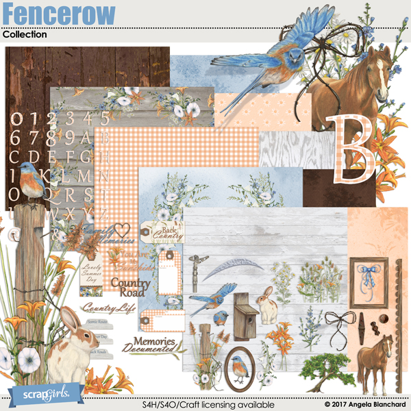 Fencerow Collection by Angela Blanchard
