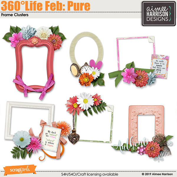 360°Life Feb: Pure Frame Clusters
