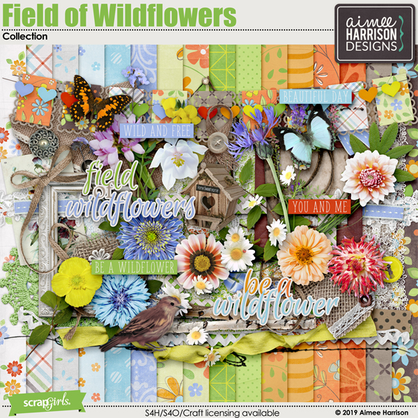 Field of Wildflowers Collection