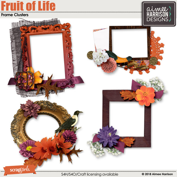 Fruit of Life Frame Clusters