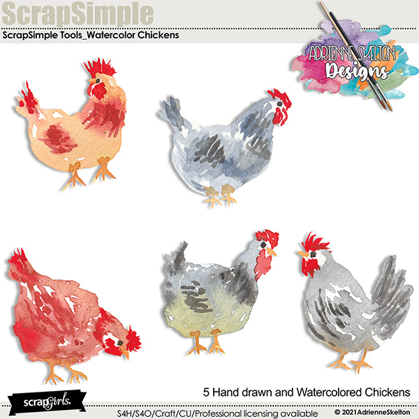 Hand Drawn Water Colored chickens