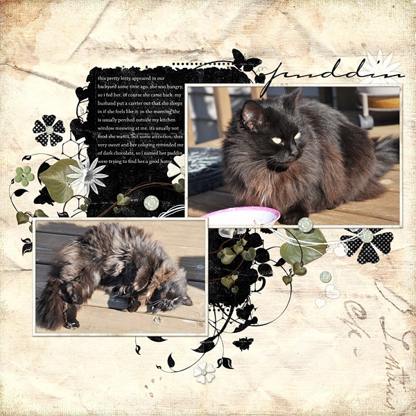 "Digital Scrapbooking Layout ""Puddin"" by Amanda S (see supply list with links below)"