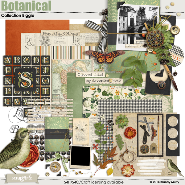 Also Available: Botanical Collection Biggie (Sold Separately)