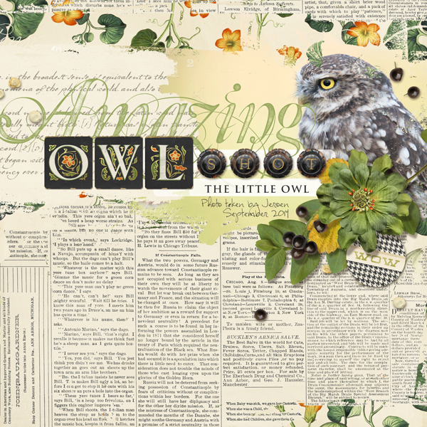 """Owl Shot"" digital scrapbooking layout by Brandy Murry"