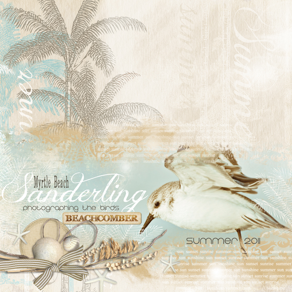�Sanderling� layout by Brandy Murry. See below for links to all products used in this digital scrapbooking layout.