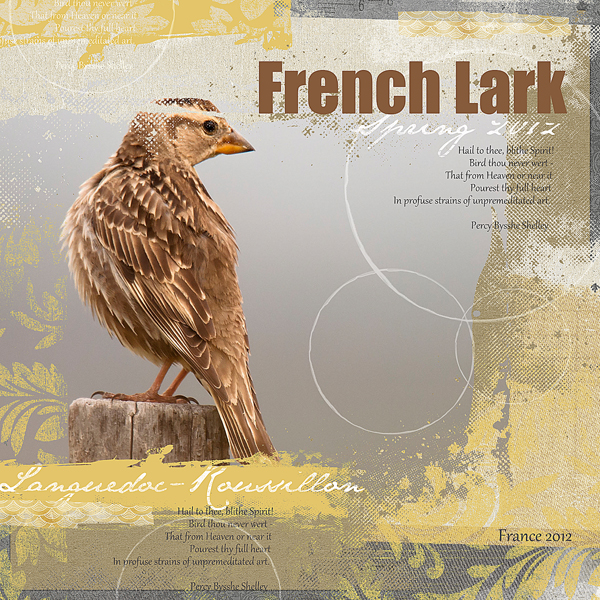 """French Lark"" digital scrapbooking layout by Brandy Murry. See below for links to all products used in this digital scrapbooking layout."