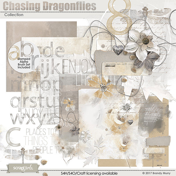 Chasing Dragonflies Collection by Brandy Murry
