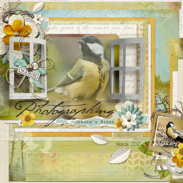 Jeroen's Birds layout by Brandy Murry. See below for links to all products used in this digital scrapbooking layout.