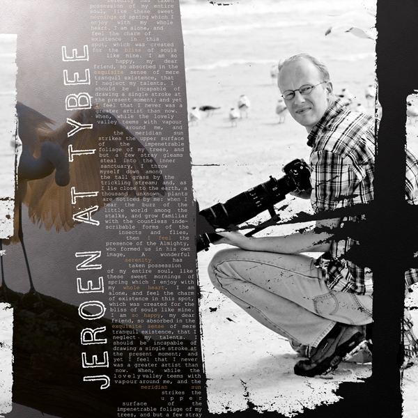 Jeroen at Tybee layout by Brandy Murry. See below for links to all products used in this digital scrapbooking layout.