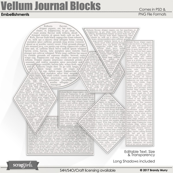 Vellum Journal Blocks Embellishments