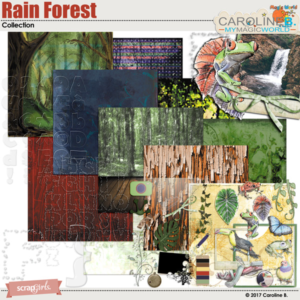 Rain Forest Collection by Caroline B.