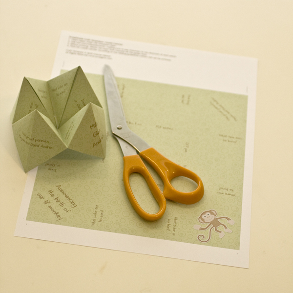 Sample of Completed Cootie Catcher used as a Birth Announcement by Cherise Oleson (see supplies used listed below)