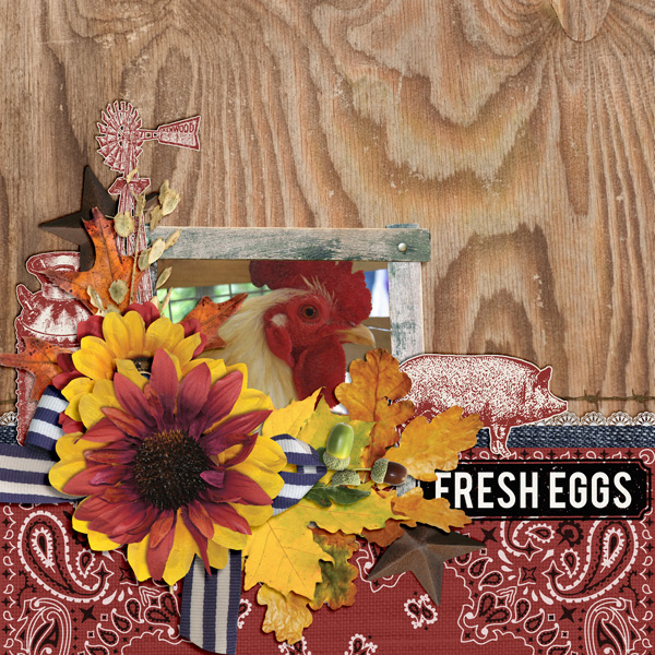 """Fresh Eggs"" layout created using the Barnwood Collection Biggie"