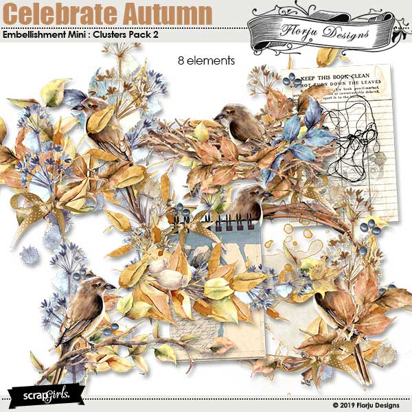 Celebrate Autumn Embellishment Mini : Clusters pack 2 by Florju Designs