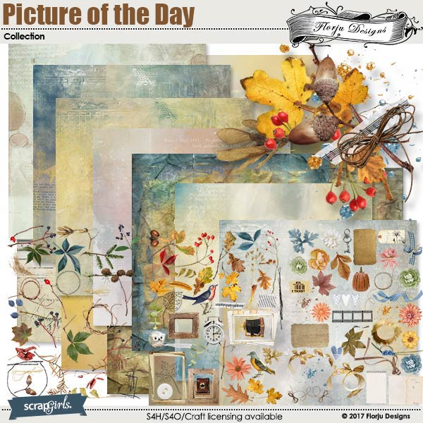Picture of the day Collection by florju designs
