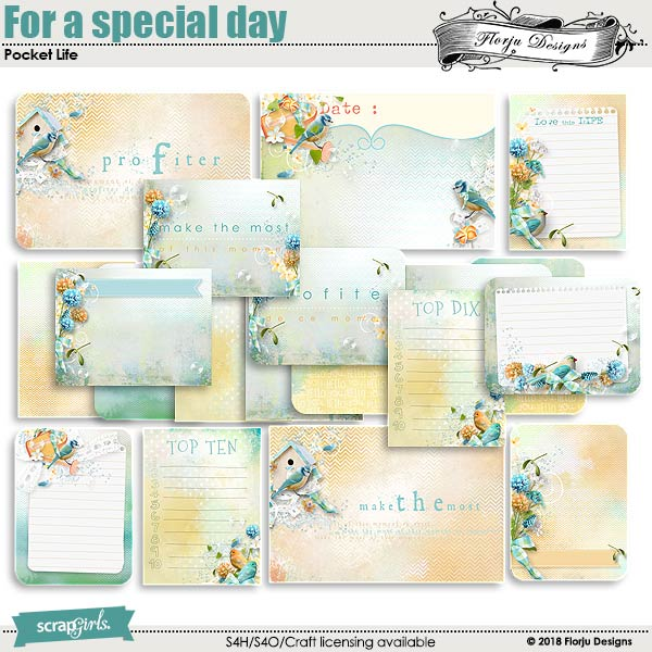 Pocket Life : For a special day Journal Cards by florju designs