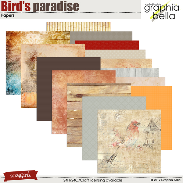 Birds paradise by Graphia Bella