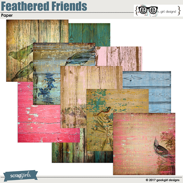 Feathered Friends Papers