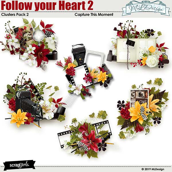 Follow Your Heart2 Clusters