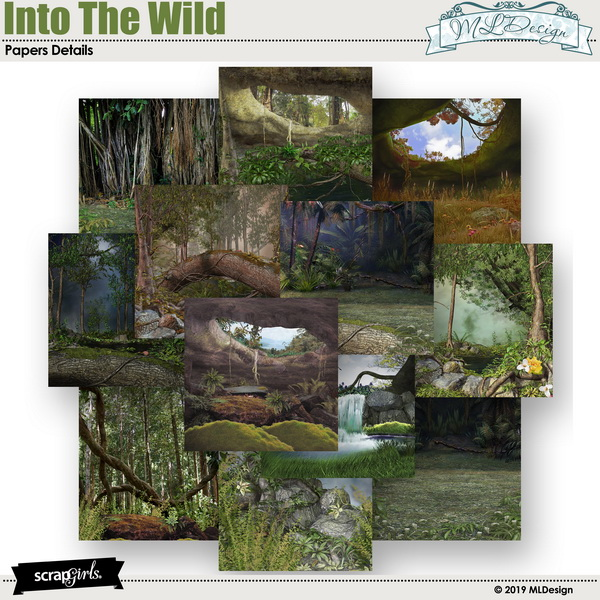 Into The Wild 1 Papers scene