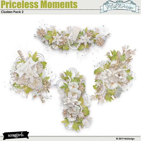 Priceless Moments Clusters2