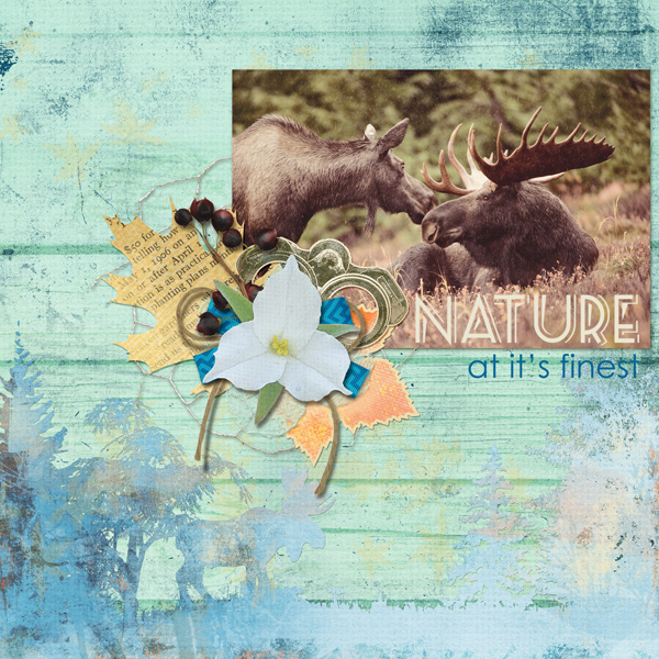 �Nature� digital scrapbook layout features Cottage Reflections Collection (see supply list below)