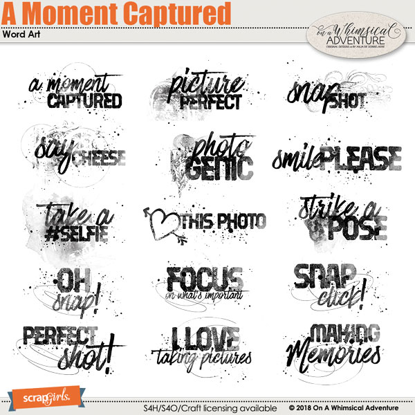 A Moment Captured Word Art by On A Whimsical Adventure