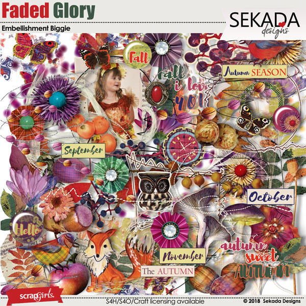 Faded Glory Embellishment Biggie