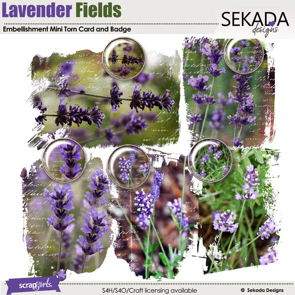 Lavender Fields Embellishment Mini Torn Cards and Badges