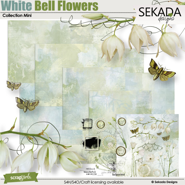 White Bell Flowers Collection Mini