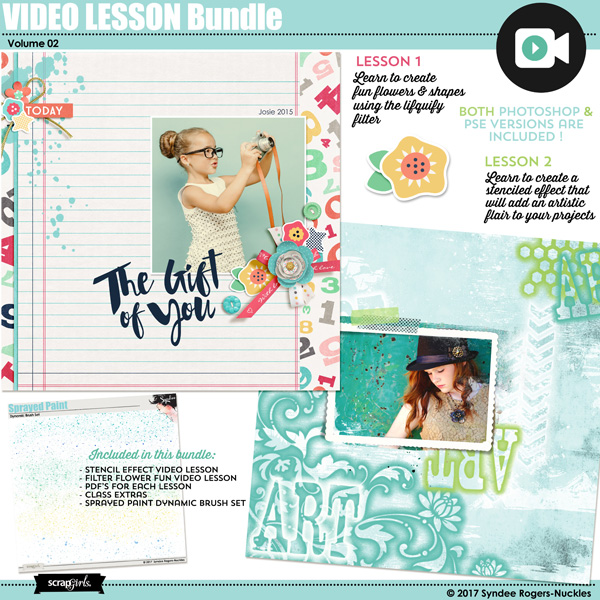 Video Lesson Bundle VOL. 2