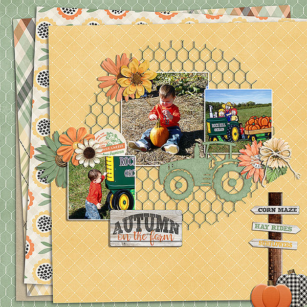 CT Layout using Farmhouse Fall by Connie Prince