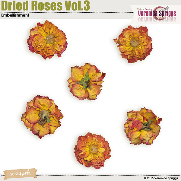 Dried Roses Vol. 3