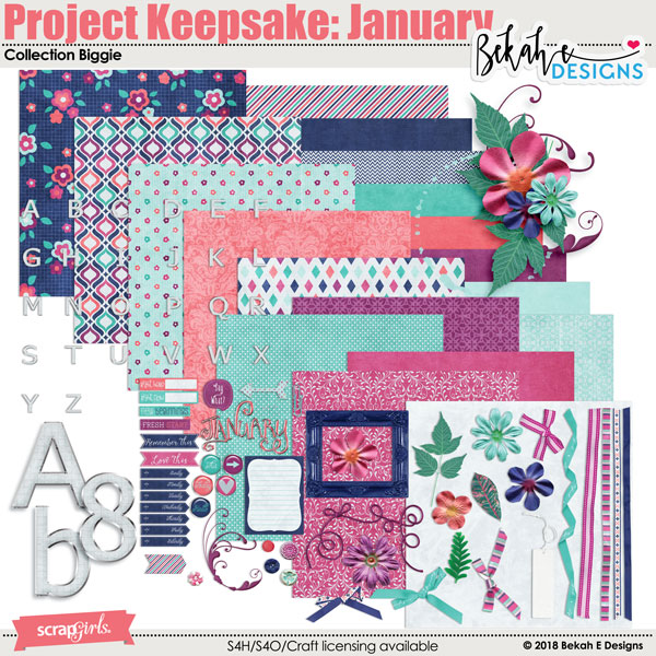 Project Keepsake: January - Collection Biggie