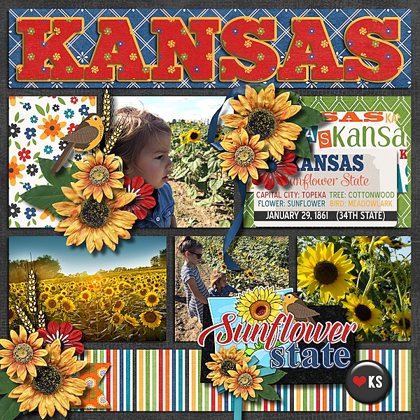 Travelogue Kansas by Connie Prince- CT Layout