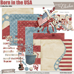 Born in the USA Collection Mini