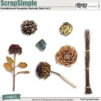 ScrapSimple Embellishment Templates: Naturally Dried Vol 2