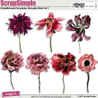 ScrapSimple Embellishment Templates: Naturally Dried Vol 1