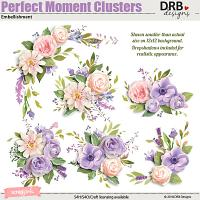 Perfect Moment Clusters Embellishment