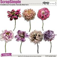 ScrapSimple Embellishment Templates: Naturally Dried Vol 3